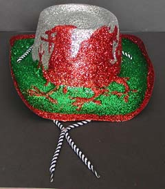 11d33d6b02a Glitter cowboy hat has a cord that ties under your chin. Made of plastic  covered all over in glitter. One size